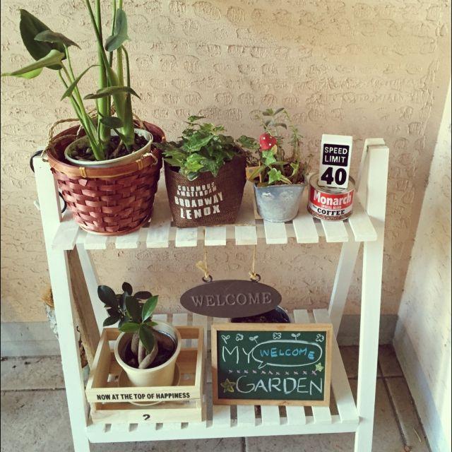 rmamaさんの、玄関/入り口,観葉植物,100均,セリア,キャンドゥ,3Coins,のお部屋写真