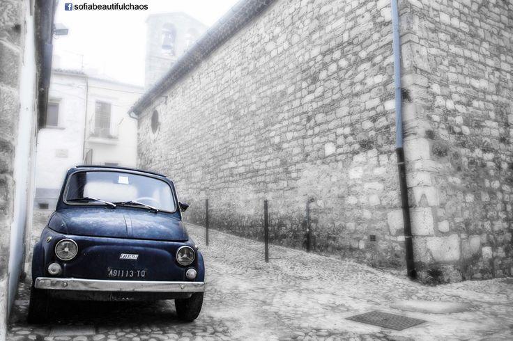 Bovino in Foggia, Puglia www.facebook.com/sofiabeautifulchaos