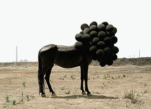andrea galvani photography photographer surreal booooooom: Blackhors, Photos Projects, Inspiration, Andrea Galvanizing, Art Photography, Black Horses, Balloons, Andrea Galvani, Black Balloon