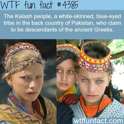 The Kalash people - WTF fun facts