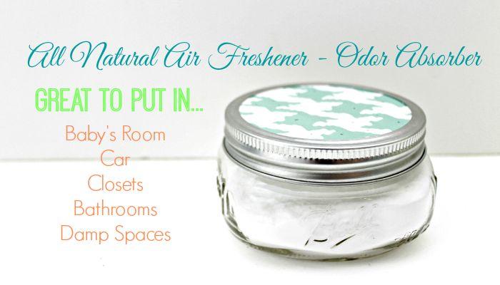 Homemade Air Freshener ~ Odor Absorber - Mom 4 Real