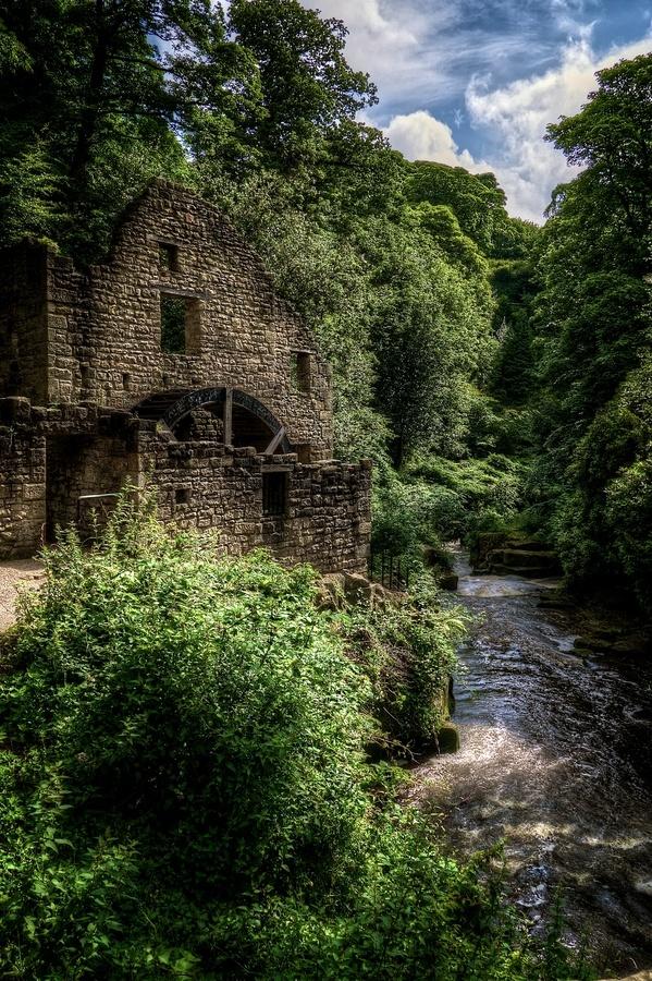 The Mill at Jesmond Dene, Newcastle upon Tyne.