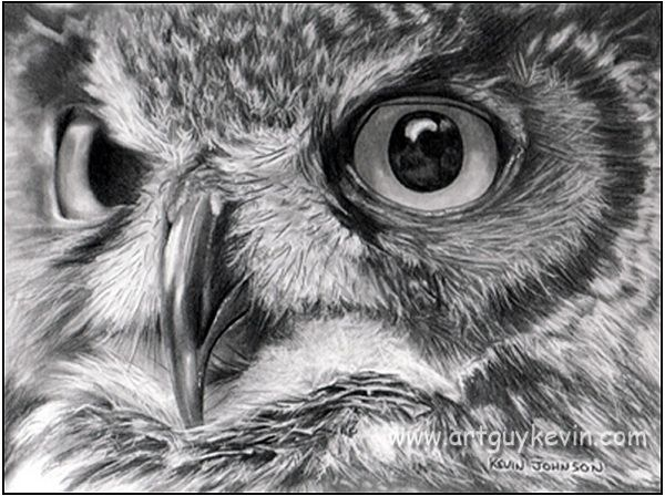 1000 ideas about owl drawings on pinterest cute owl for Draw the owl