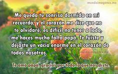 Frases para un padre fallecido con imágenes para compartir y expresar nuestro pesar. Mensajes para un papá difunto, para padres fallecidos con palabras tristes