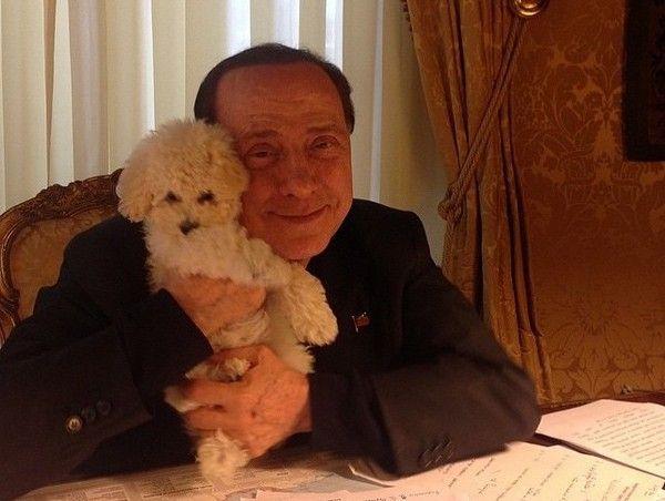 Silvio Berlusconi jako opiekuńczy ojciec i miłośnik zwierząt?