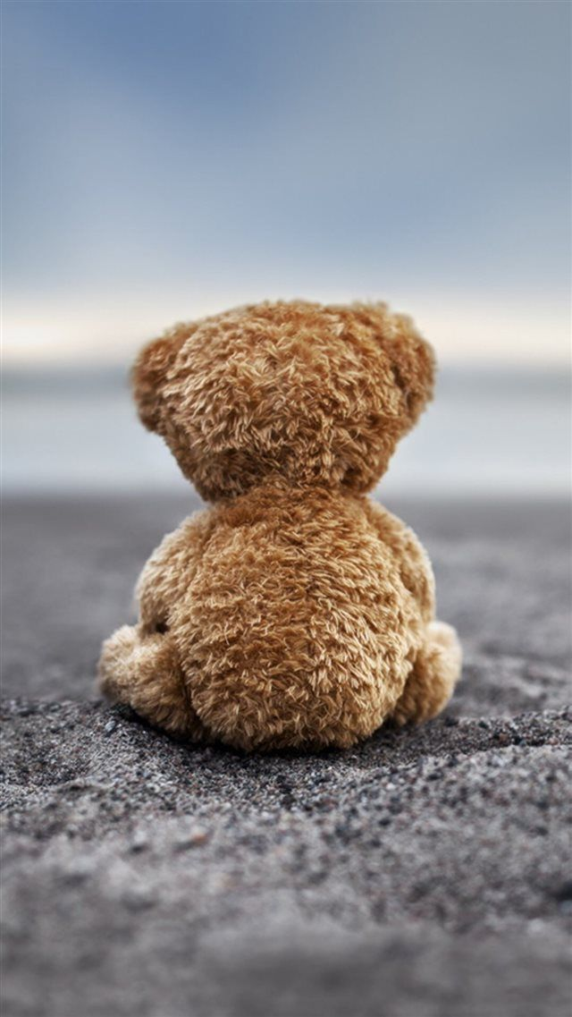 Bear Doll Back Lonely Ground Iphone 8 Wallpaper Teddy Bear Wallpaper Bear Wallpaper Teddy