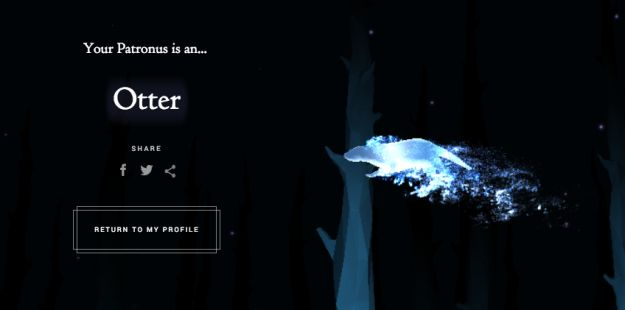 We finally all learned our Patronuses, after approximately a million years of waiting for an official Pottermore quiz.