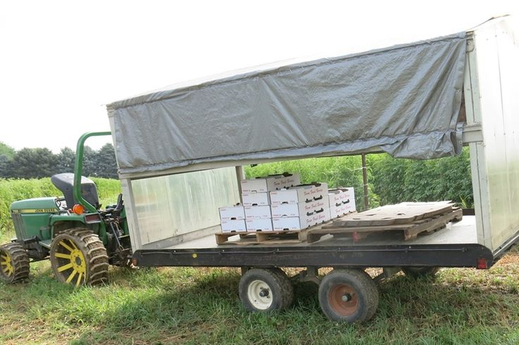 Reducing Food Safety Risks During Harvest: Methods to keep produce as clean as possible and prevent contamination during harvest.