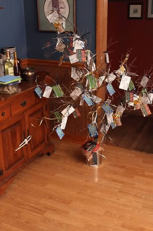 Great birthday gift idea, birthday lottery ticket tree (money tree) Easy and fun to make. Take 2 small branches to make a tree, you can tie these together with ribbon. I put these in a coffee can with bird seed to hold these up. I bought 88 lottery tickets for my dads 88th birthday. Hole punch corners of lottery tickets and tie with ribbon to branches.