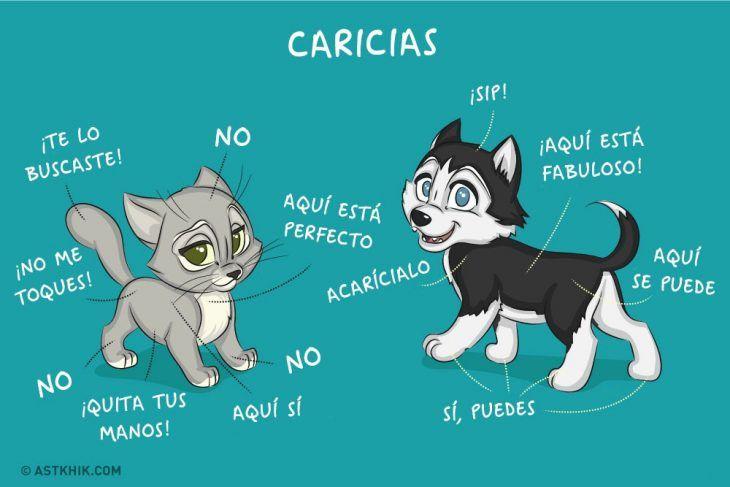 Comic que muestra las diferencias de vivir con un perro y con un gato mostrando la parte en donde les gusta que los acaricien