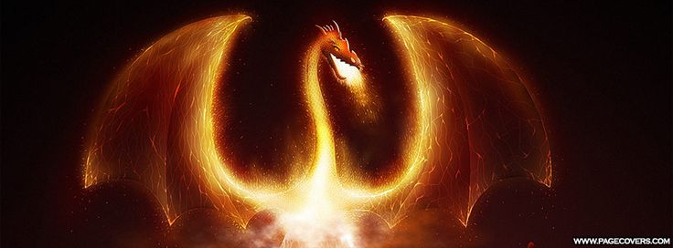 Dragon On Fire Facebook Cover