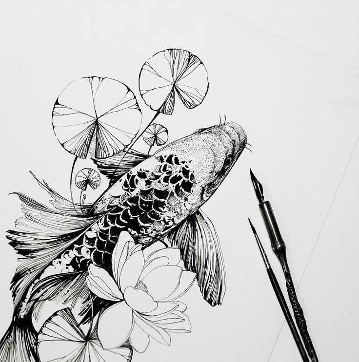 Koifish sketch by Duana Severinenko tattoo artist in Kiev