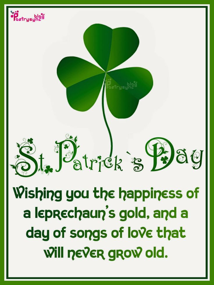 1000 images about saint patrick 39 s day on pinterest for Funny irish sayings for st patrick day