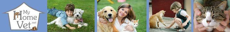 Dr. Teri Sue Wright, DVM of My Home Vet website link on http://www.bestcatanddognutrition.com/roger-biduk/list-of-900-u-s-holistic-integrative-veterinarians/ Roger Biduk