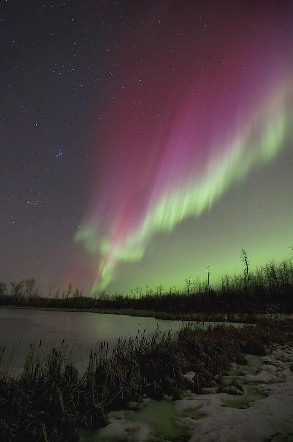 ✮ Northern Lights, Edmonton, Alberta - etheric whisperings in the night. PBperfectsaturday with @Caitlin Burton Flemming and @Jessica Grinsteinner Barley