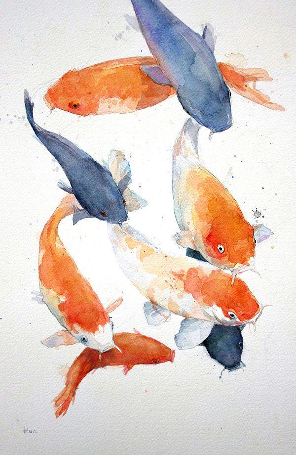 Group Eight Koi Carp Watercolour Alex Egan Koi Aquarelle