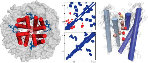 Structural Determinants of Specific Lipid Binding to Potassium Channels
