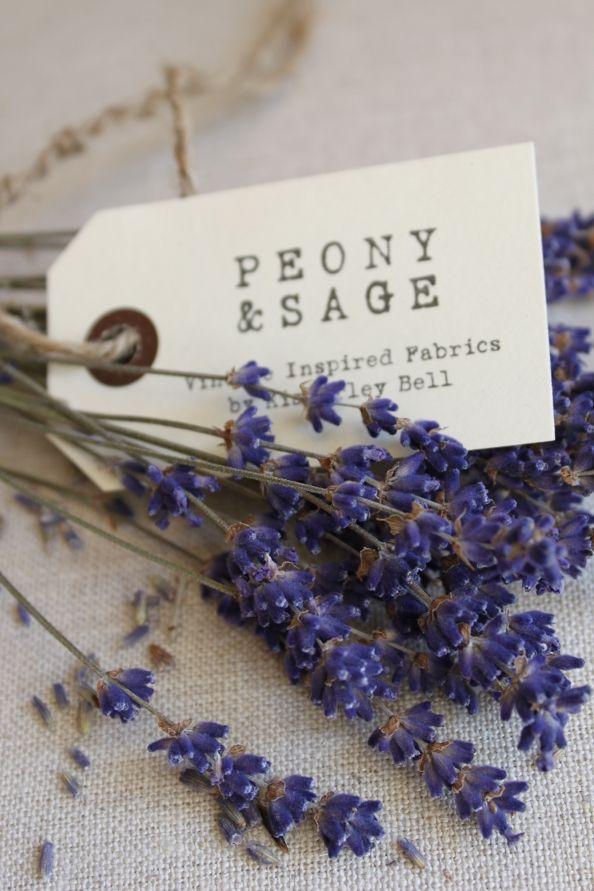Branding by Peony & Sage