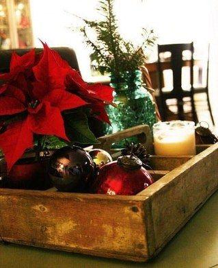 El muérdago, el abeto, la rosa de Navidad, el acebo... son muchas las plantas que son típicas de estas fiestas pero, ¿sabes cómo...