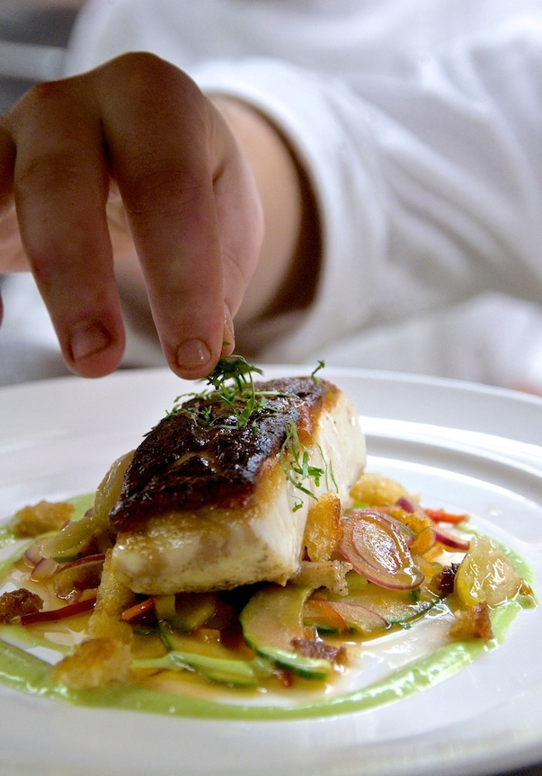 17 best images about food fish entree 39 s on pinterest for Gourmet fish recipes