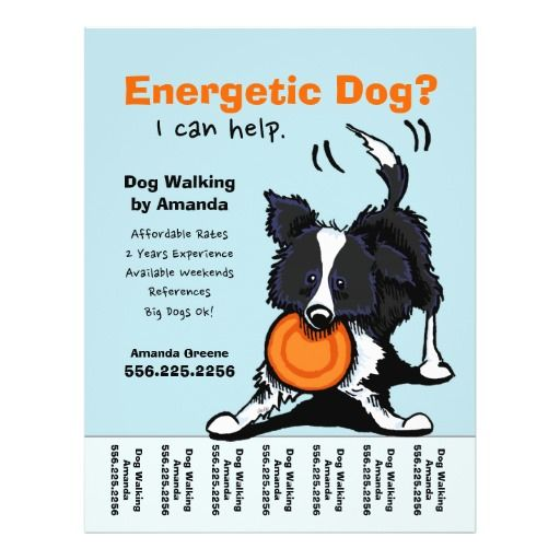 Dog Walker Walking Personalized Tear Sheet Custom Flyer