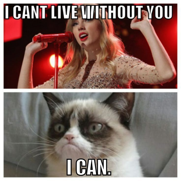 grumpy cat meme taylor swift - Google Search                                                                                                                                                                                 More