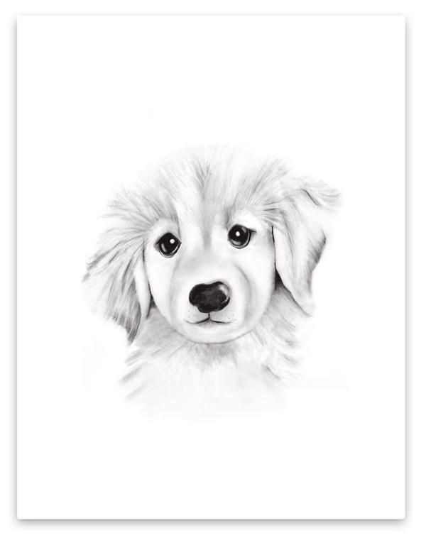 Puppy Sketch Fluffy Face Print In 2020 With Images Baby Animal