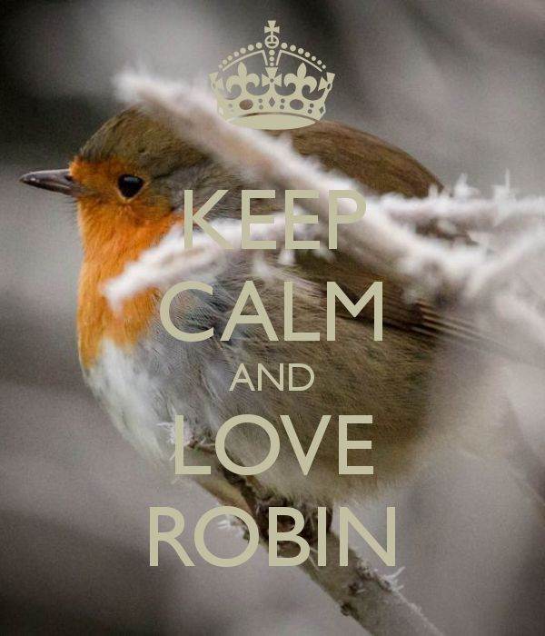 KEEP CALM AND LOVE ROBIN - by JMK