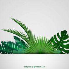 Folhas tropicais fundo Vetor grátis