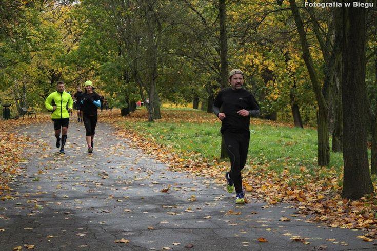 Szukając zaignioną lub goniąc uciekającą formę http://biegaczamator.com.pl/?p=16292