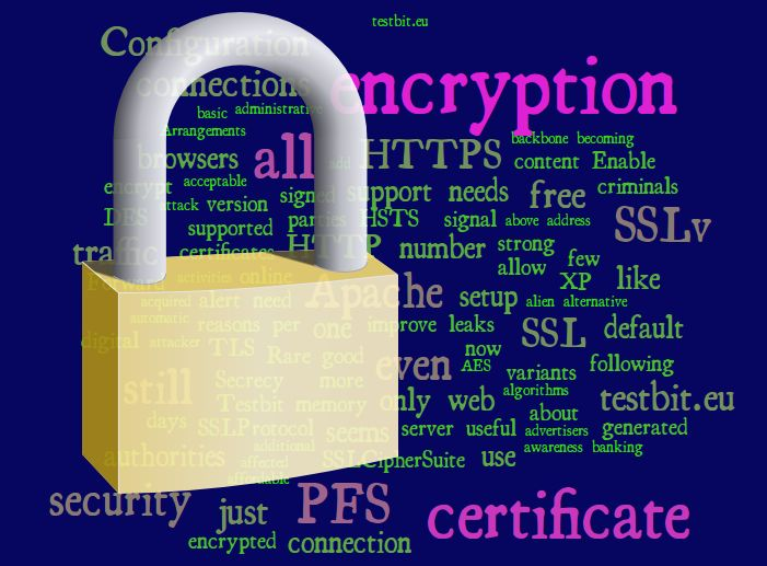 Considerations and setup procedure to move a website to HTTPS only traffic with Perfect Forward Secrecy and HSTS