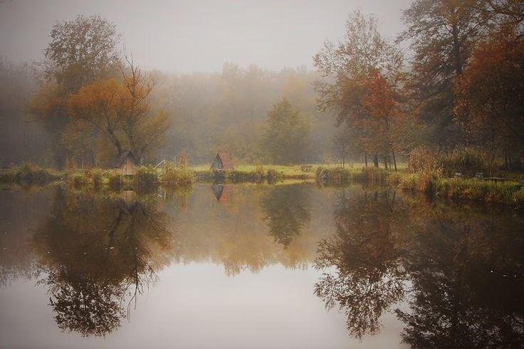 Ősz a tónál, Sződliget, Hungary