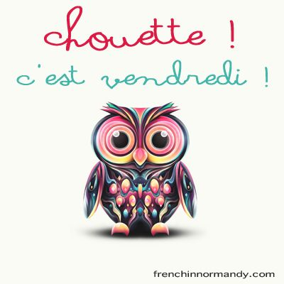CHOUETTE: (informal adjective) cute, smashing, nice Ta copine est chouette - Your girlfriend is nice. C'est chouette ! - That's great ! Related: une chouette - owl