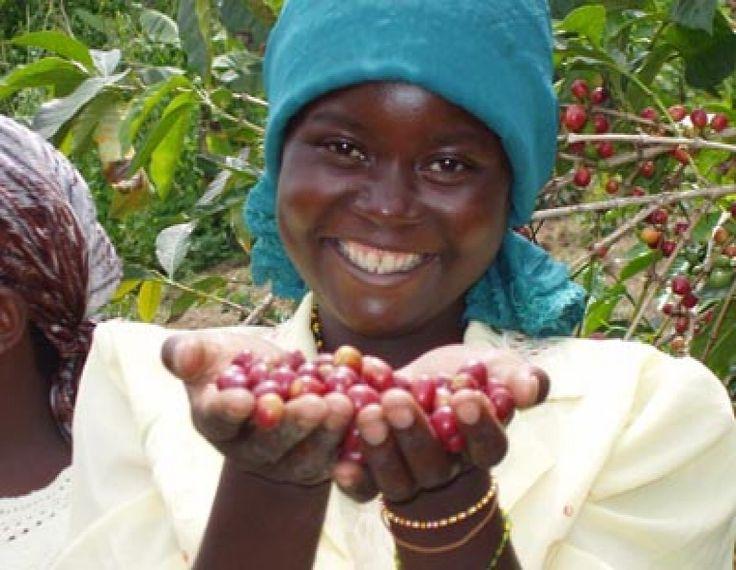 Rwandan Full Washed Inzovu