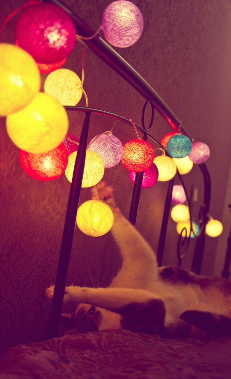 Pink christmas lights in bedroom - Cotton Ball Lights