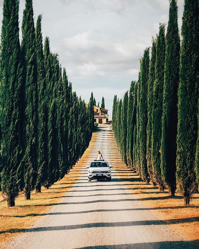 { Cypress Hills } • Tuscany. Where roads are masterpieces of elegance. Traveling…