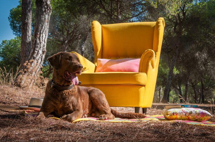 ©Lucila http://sevilla.abc.es/estilo/bulevarsur/noticias/estilo-de-vida/como-disfrutar-de-las-lecturas-del-verano-parte-3/
