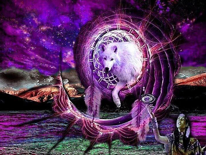 dreamcatcher native wolf spirit wallpaper - photo #9