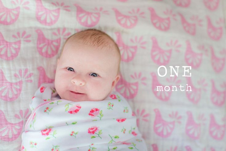 """ONE month – this is what it looks like  Imogen is having a """"Watch me Grow"""" photo package, which means I get to hang out with her every single month for 12 months & take cute photos! """"Watch me Grow"""" is an ADD ON to a Baby's First Year Photo package.  …"""
