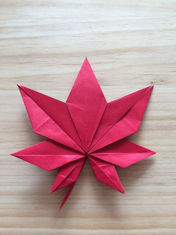 17 best images about origami leaves on pinterest how to