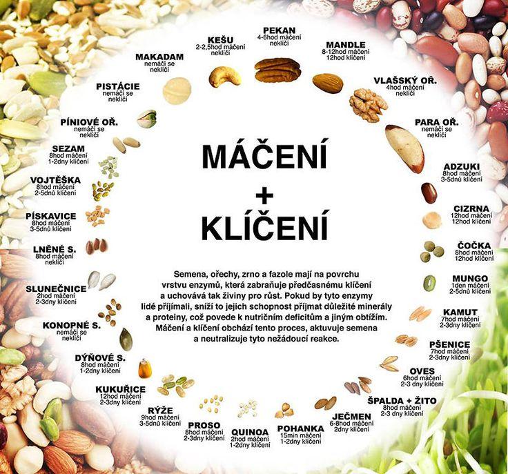 namaceni a kliceni orechu a seminek