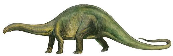 Brontosaurus A Prehistoric Era Dinosaur Posters Prints By Sergey Krasovskiy Brontosaurus Dinosaur Dinosaur Art