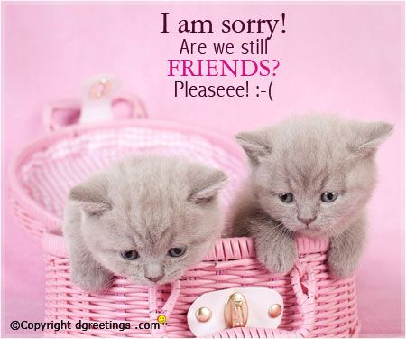 A simple apology can strengthen the bond of friendship.