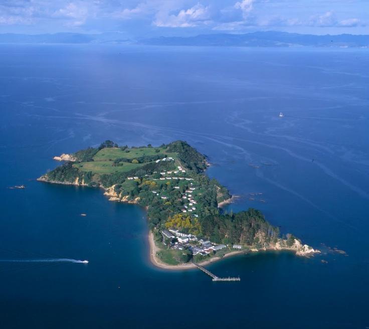 Pakatoa Island - Photo from helicopter