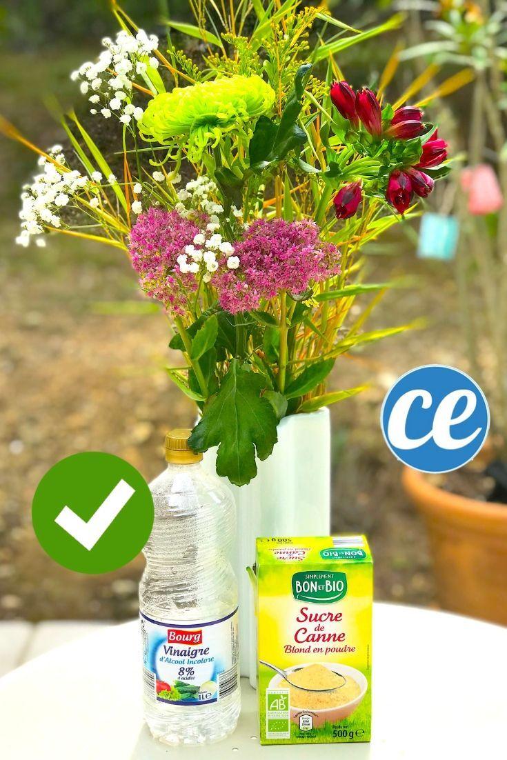 Comment Faire Un Bouquet De Roses comment faire durer un bouquet plus longtemps ? l'astuce de