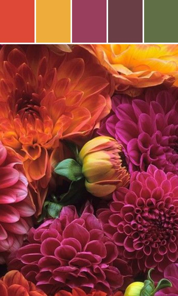 Fall Florals Designed By karensavagedesign via Stylyze