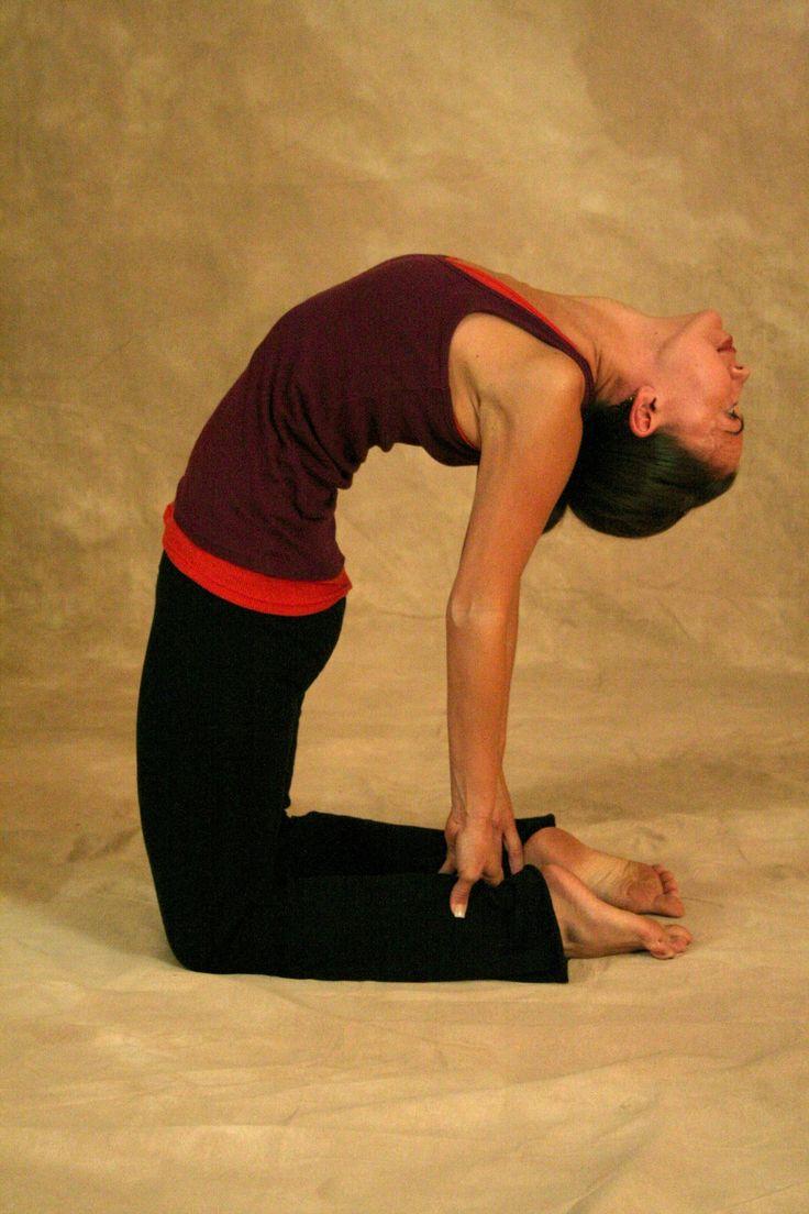 yoga positions yoga positions for beginners basic yoga positions yoga positions for weight loss yoga workout easy yoga positions yoga stretches yoga poses advanced yoga positions