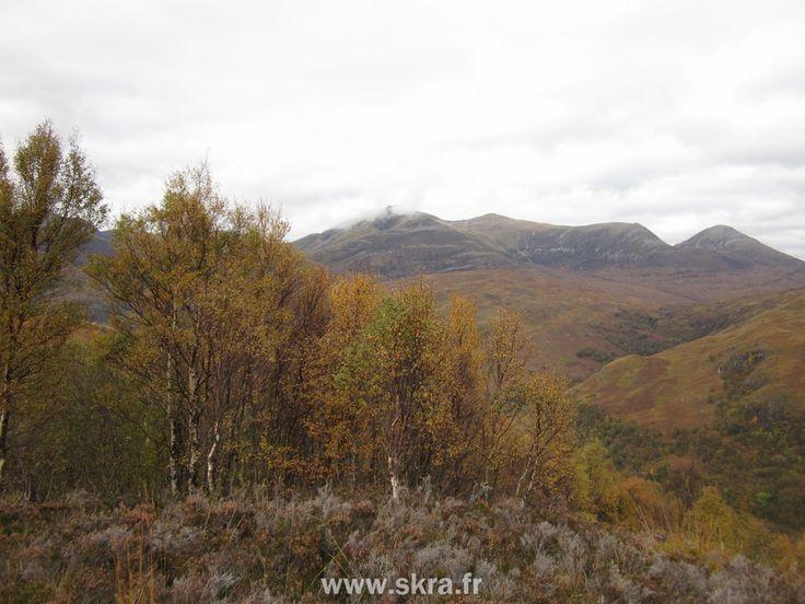 Forêts sauvage en automne depuis le sommet d'une montagne anonyme, Ecosse
