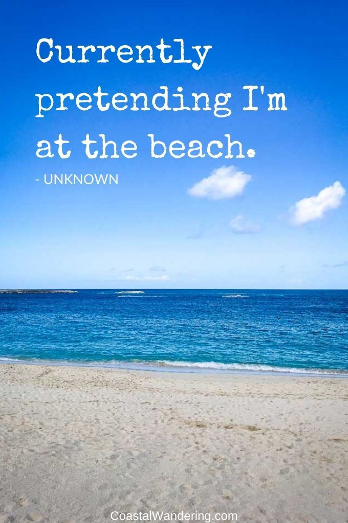 59 Beach Quotes To Brighten Your Day In 2020 With Images