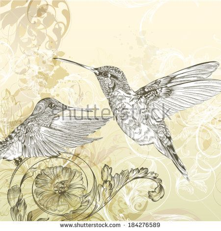 Fashion vector background with detailed hand drawn flourishes and birds